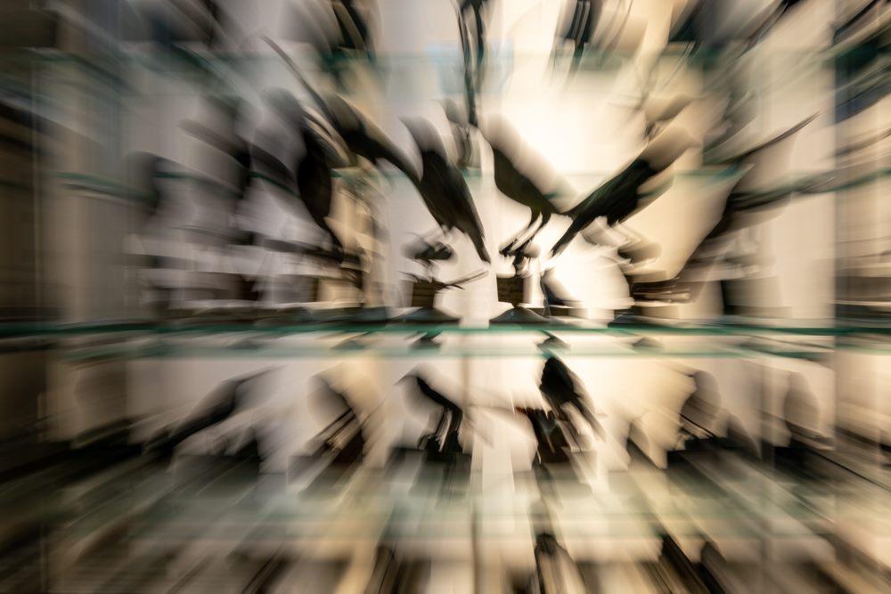 """Exposition """"Plumes, poils & pixels"""""""